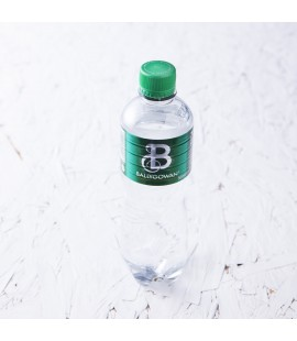 Sparkling Bottled Water - Ballygowan (500ml)